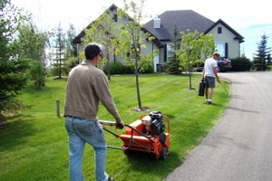 Calgary Lawn Fertilizer